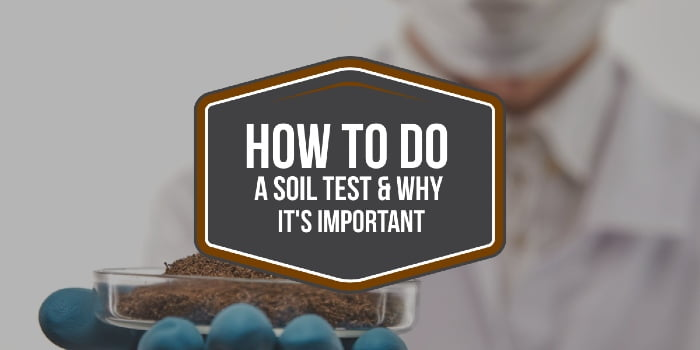 How To Do A Soil Test & Why It's Important