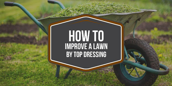 How To Improve A Lawn By Top Dressing