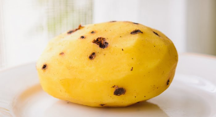 potato infected with potato scab