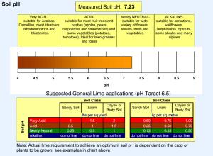 Soil Testing PH